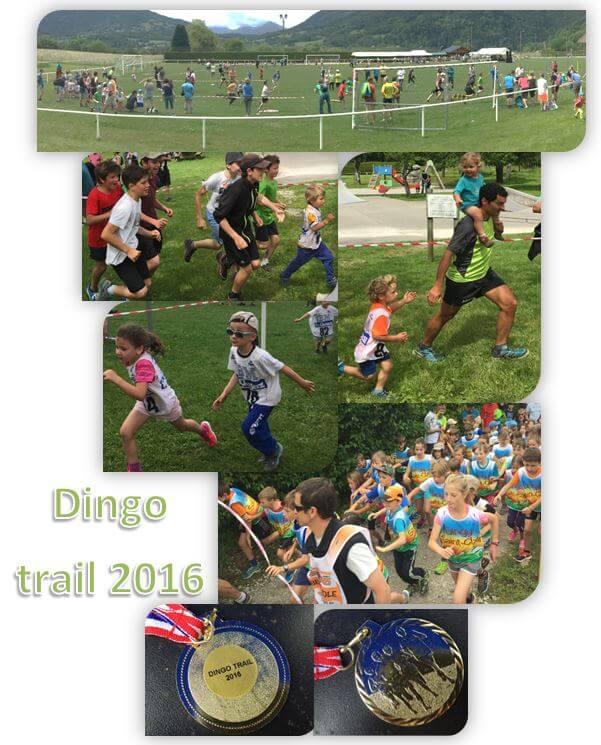 Dingo trail 2016e